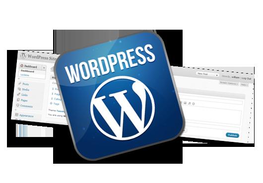 wordpress web site design